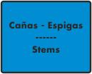 Cañas - Espigas / Stems